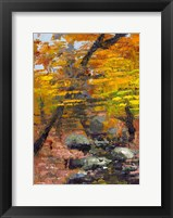 Framed Autumn Woods