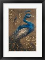 Framed Pershing Peacock I