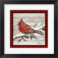 Framed Winter Red Bird IV