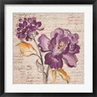 Framed Lilac Beauty II