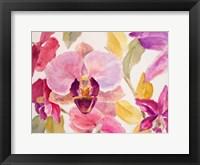 Framed Radiant Orchid II