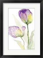Framed Teal and Lavender Tulips II