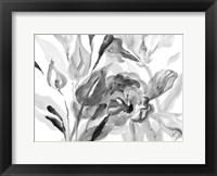 Framed Dark Florals