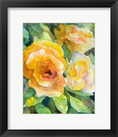 Framed Yellow Roses Garden