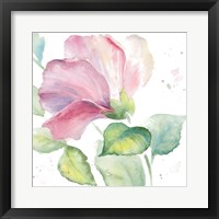 Framed Fragrant Hibiscus I
