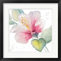 Framed Fragrant Hibiscus II