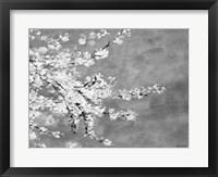 Framed Sakura Silver
