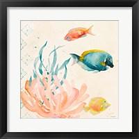 Tropical Teal Coral Medley II Framed Print