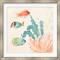 Framed Tropical Teal Coral Medley I