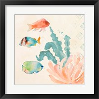 Framed Tropical Teal Coral Medley I