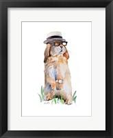 Modern Bunny II Framed Print