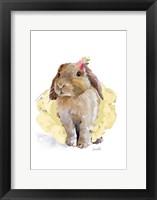 Framed Ballet Bunny II