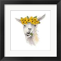Framed Floral Llama I