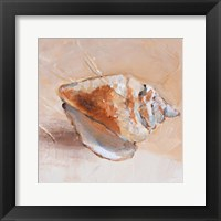 Framed Copper Sea Shell