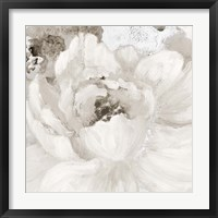 Framed Light Grey Flowers I