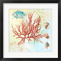 Framed Deep Sea Coral I