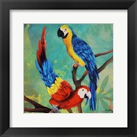Framed Tropical Birds in Love II