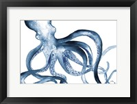 Framed Octopus in the Blues