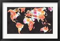 Framed World Florals