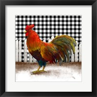 Framed Morning Rooster II