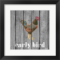 Framed Early Bird Rooster