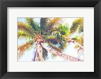 Framed Sideway Watercolor Palms II