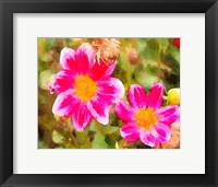 Framed Last Spring I