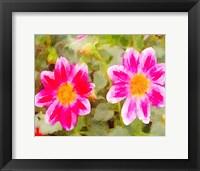 Framed Last Spring II