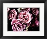 Framed Baroque Roses