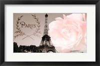 Framed Vintage Paris