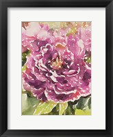 Framed Purple Blossoms