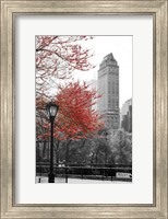 Framed Central Park with Red Tree