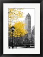 Framed Central Park with Yellow Tree