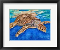 Framed Turtle at Sea