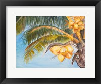 Framed Coconut Palm Trees