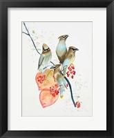 Framed Birds on Branch