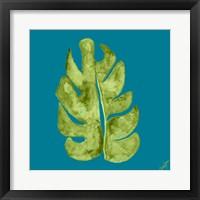 Framed Leaf On Teal II