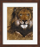 Framed Gold Lion