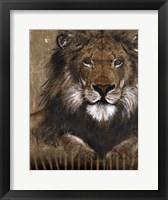 Framed Brown Lion