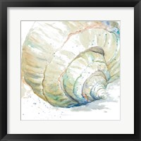 Framed Water Conch