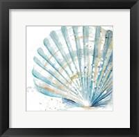 Framed Water Shell