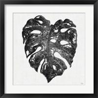 Framed Dark Leaf Palm II