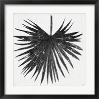 Framed Dark Leaf Palm I