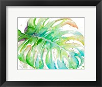 Framed Zoomed Tropical Monstera