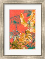 Framed Orange Palm Selva I