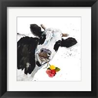 Framed Crazy Cow