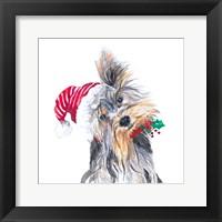 Framed Holiday Dog III