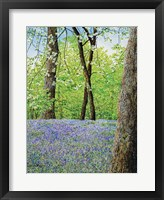 Framed Blue Bells