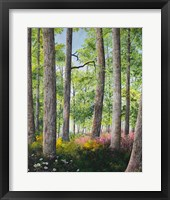Framed Enchanted Forest