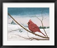 Framed Auburn Cardinal
